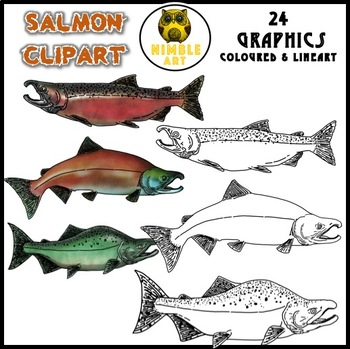 Salmon clipart fish product #12