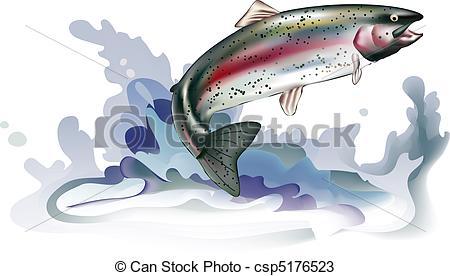 Salmon clipart steelhead #13
