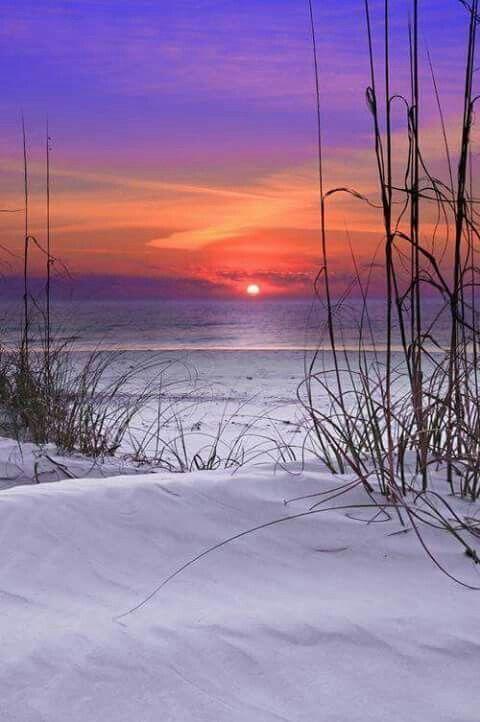 Sandy Beach clipart beach scenery Sand Sunset 25+ + Beach