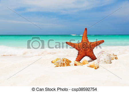 Sandy Beach clipart caribbean Images for space sandy white
