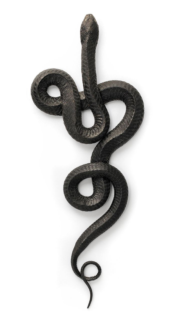 Satanism clipart snake in grass On Itself the Copies ideas