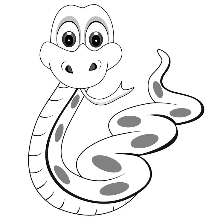 Serpent clipart black and white On Google Search snake outline