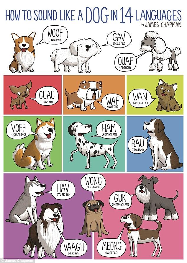 Saying clipart animal sounds #12