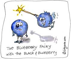Blueberry clipart funny Clipart fairy art cute Funny
