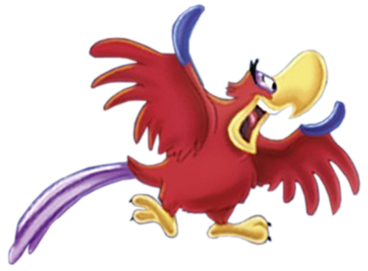 Scarlet Macaw clipart animated #11