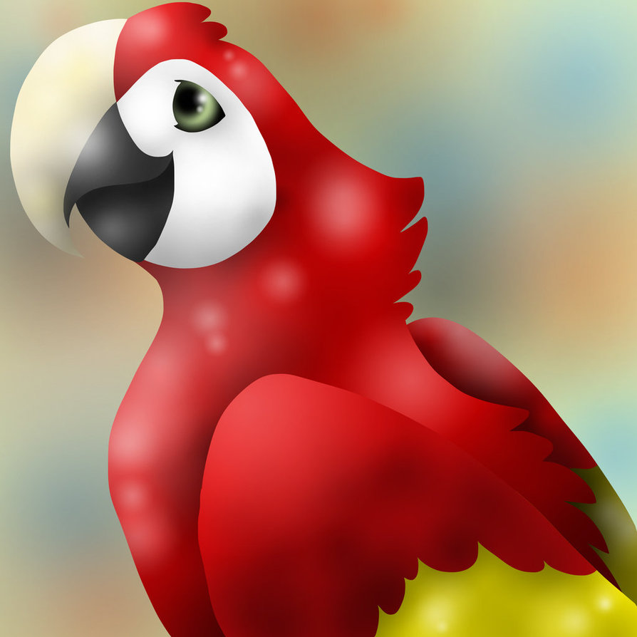 Scarlet Macaw clipart drawing #15