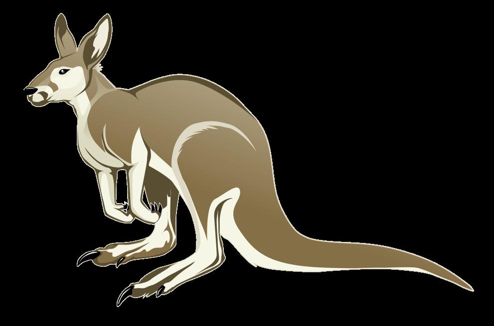Animal clipart baby lion Small Page Kangaroo Art to