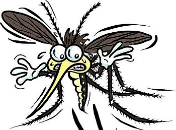 Mosquito clipart scared Of by of  garlic