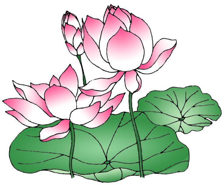 Scenery clipart lotus flower #12