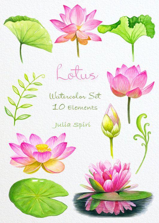 Scenery clipart lotus flower #7