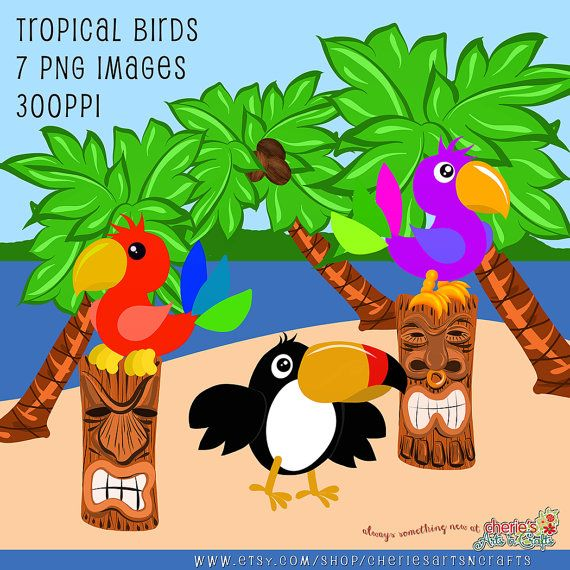 Scenery clipart tropical bird #10