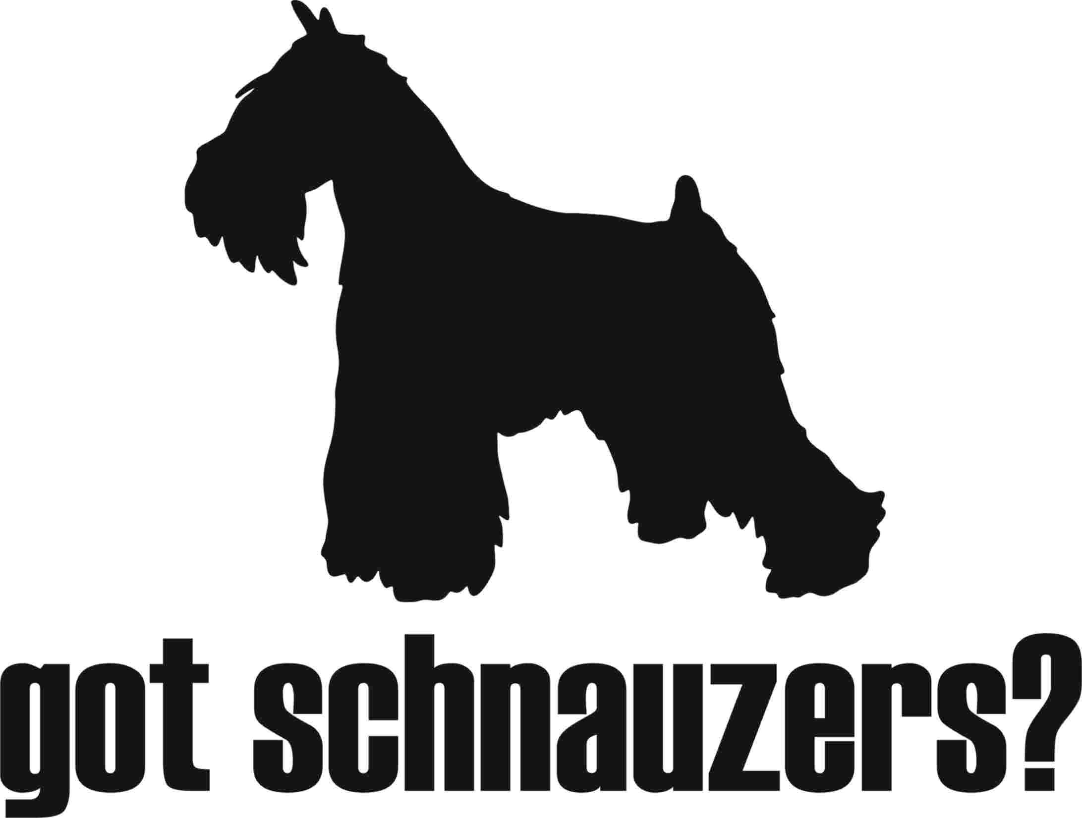 Schnauzer clipart AGILITY schnauzer ITEMS clipart
