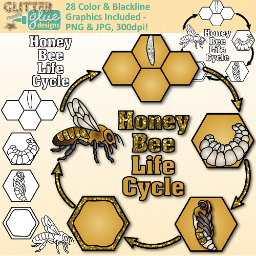 Science clipart bee #2