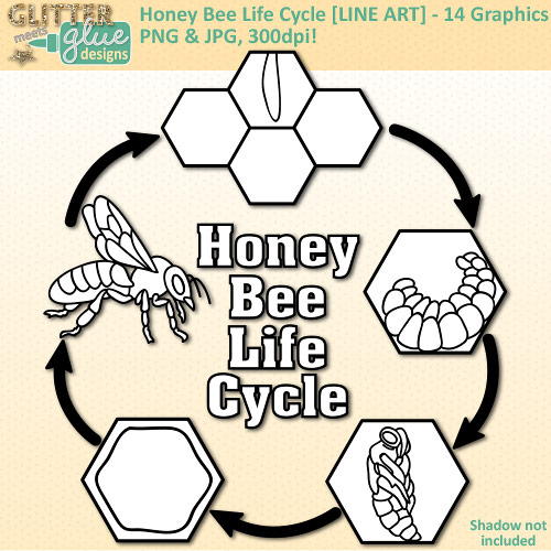 Science clipart bee #5