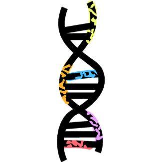 Science clipart gene Art Gene Genetics  Clip