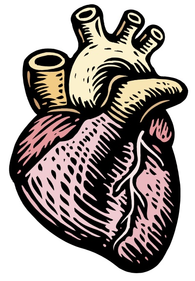Science clipart heart #4