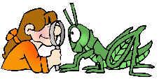 Scientist clipart nature #11