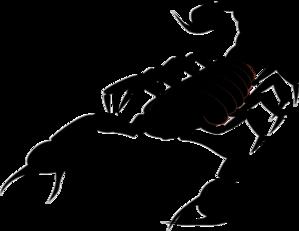 Scorpion clipart At Clip art  Scorpion