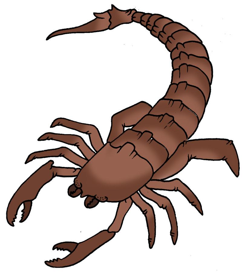 Scorpion clipart Clip clip Scorpion Scorpion Savoronmorehead