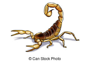 Scorpion clipart #3