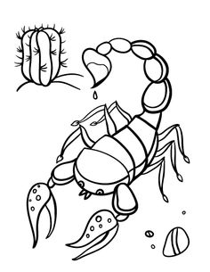 Drawn scorpion coloring page Coloring Printable Scorpion page For