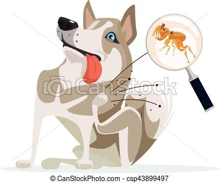 Scratches clipart flea Dog cartoon Vector scratches Vector