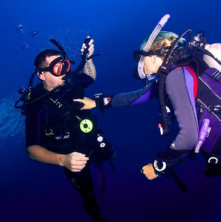 Diving clipart platform diving Cancun Scuba Course Sale Diving