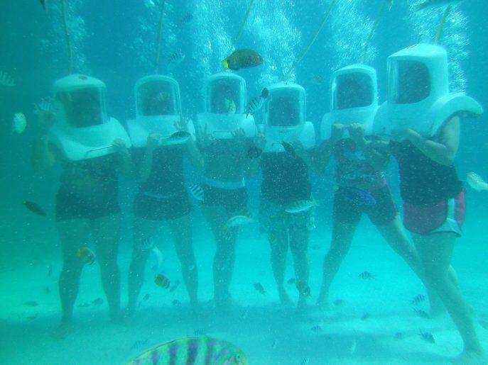 Sea Bed clipart ocean ecosystem #12