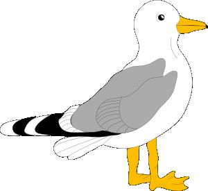 Sea Bird clipart Sea Bird Download Clipart Bird