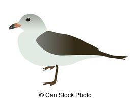 Sea Bird clipart Seabird Seabird White Vector Seabird