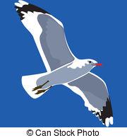 Sea Bird clipart Seabird seagull in Images Seabird