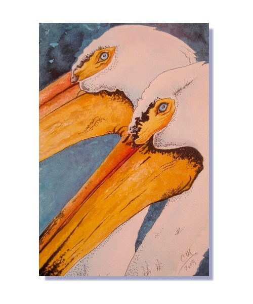 Sea Bird clipart one #6