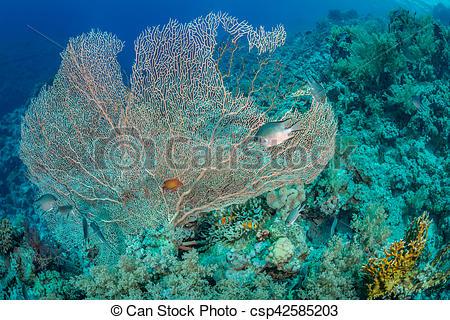 Sea clipart habitat #15