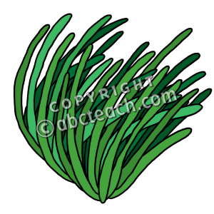 Sea clipart sea grass #9