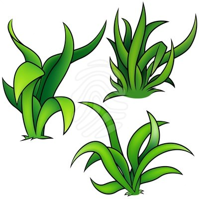 Sea clipart sea grass #1