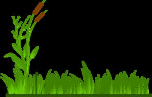 Sea Grass clipart grass border #6