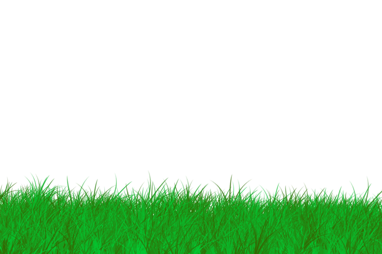Sea Grass clipart grass border #15