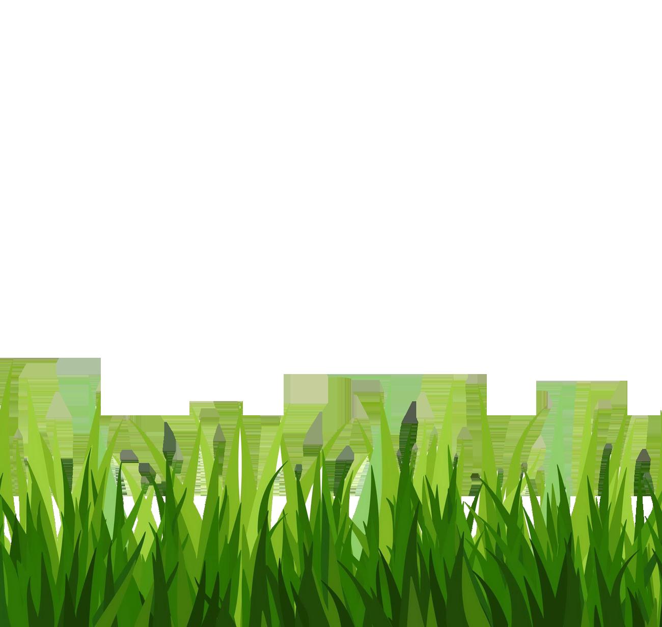 Sea Grass clipart grass border #11