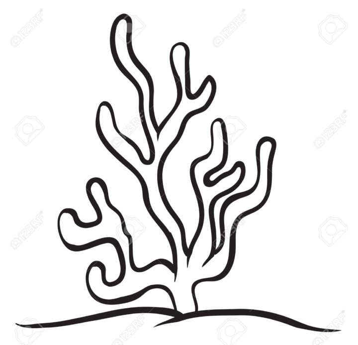 Seaweed clipart sea plant #4