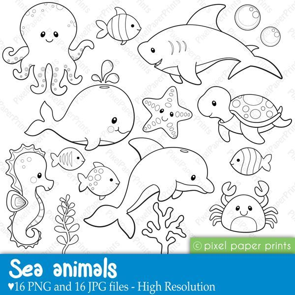 Sea Life clipart baby shower whale #14