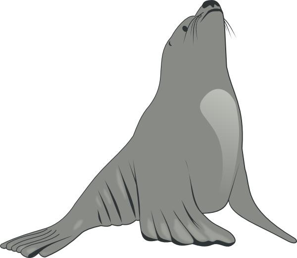 Sea Lion clipart Drawing Sea Sea Open clip