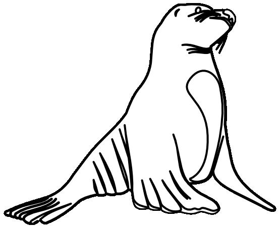 Sea Lion clipart Sea Lion #16 Sea Sea
