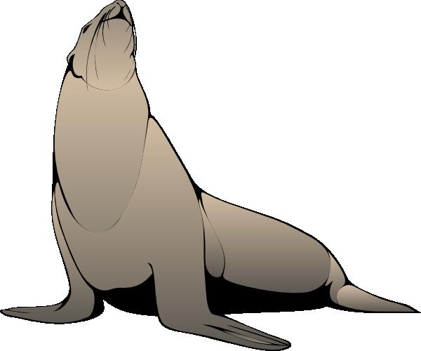 Sea Lion clipart Clip Lion Images Art Sea