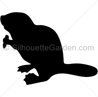 Sea Lion clipart animal shadow #10
