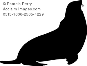 Sea Lion clipart animal shadow #7