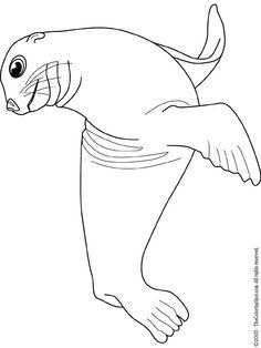 Sea Lion clipart head #12