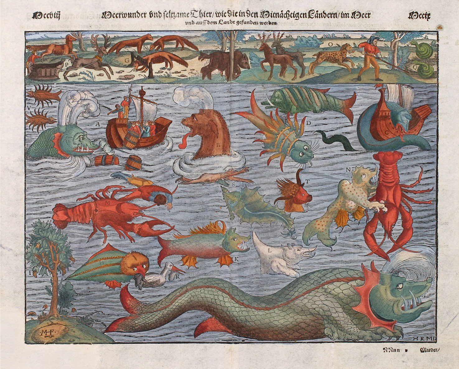 Sea Monster clipart nordic sea A of Sebastian Münster's of