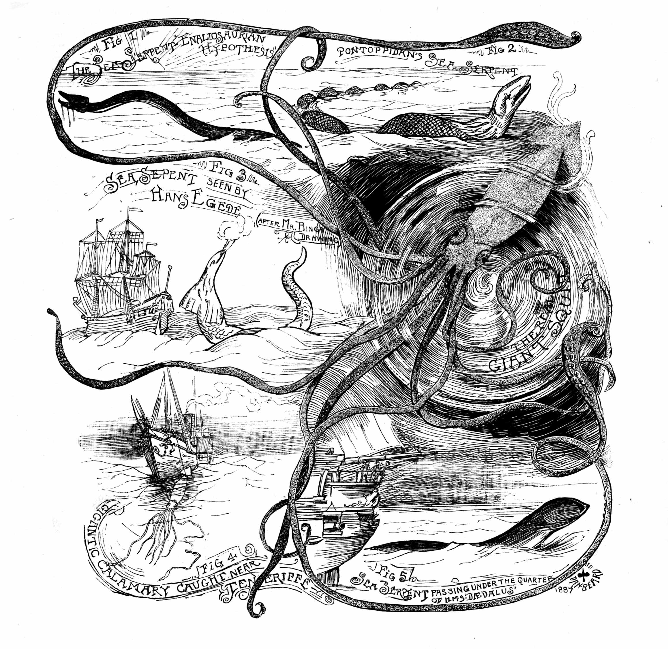 Sea Monster clipart old world Or in are known be