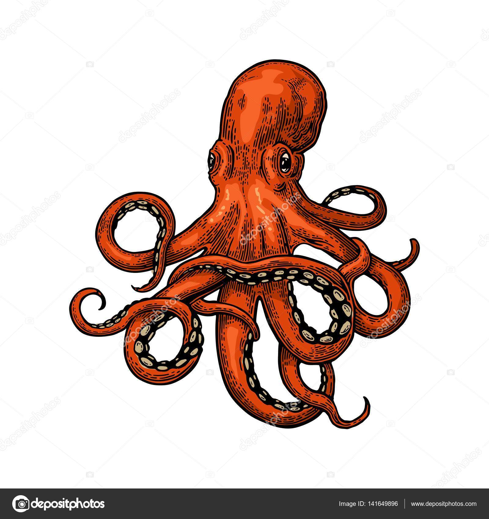 Sea Monster clipart orange #141649896 Monster #141649896 Stock DenisPotysiev