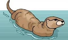 Sea Otter clipart Otter Free Sea Sea Clipart